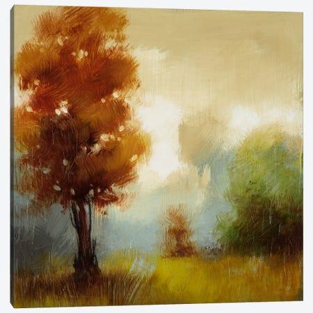 Hinterland XV Canvas Print #DAG21} by DAG, Inc. Canvas Print