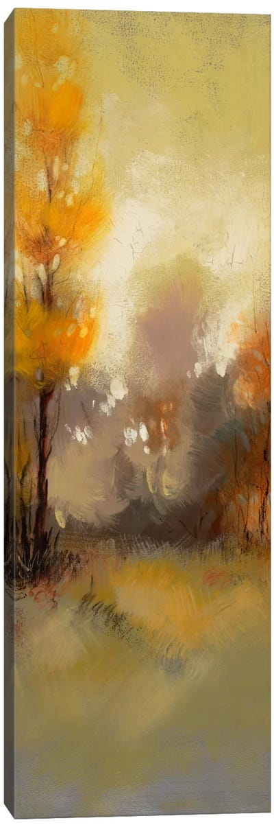 Hinterland XXV Canvas Art Print