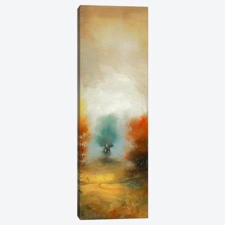Hinterland XXXII Canvas Print #DAG23} by DAG, Inc. Canvas Art Print