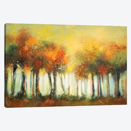 Hinterland VI Canvas Print #DAG24} by DAG, Inc. Canvas Art