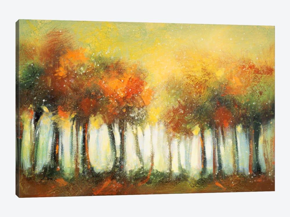Hinterland VI by DAG, Inc. 1-piece Canvas Artwork