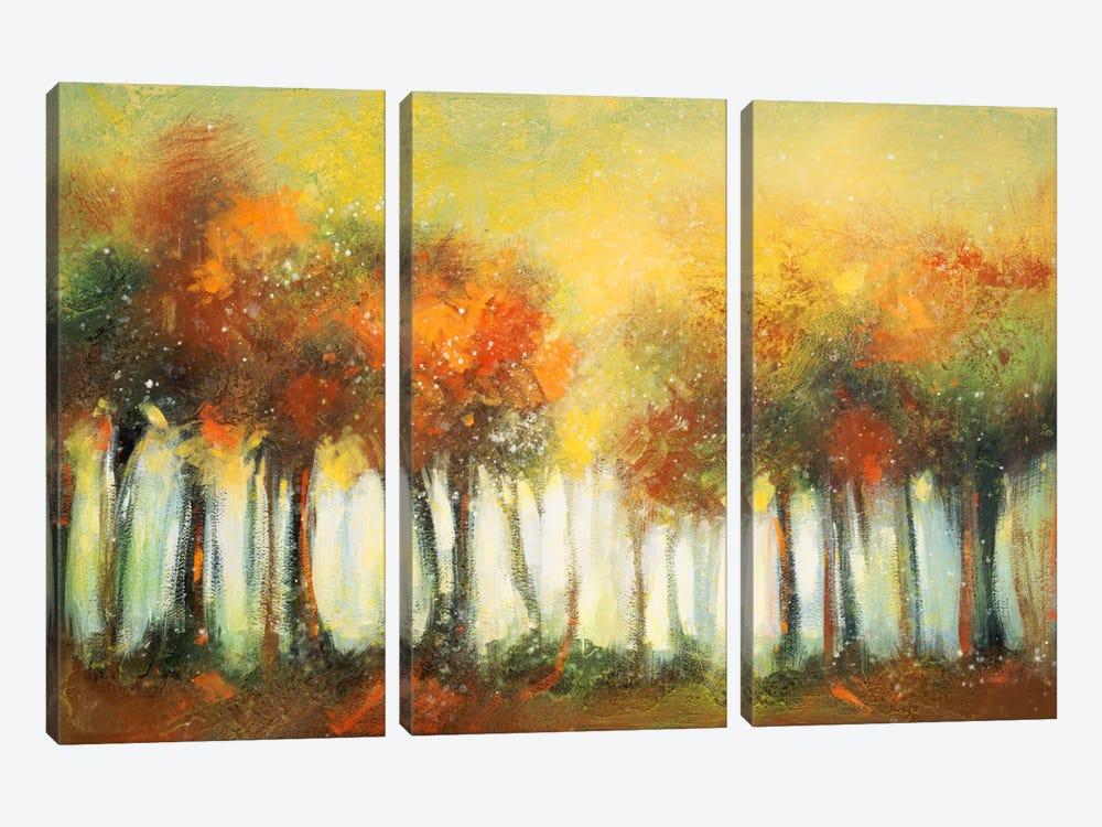 Hinterland VI by DAG, Inc. 3-piece Canvas Artwork