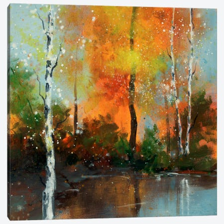 Hinterland VII Canvas Print #DAG25} by DAG, Inc. Canvas Art