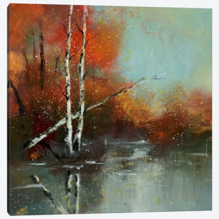 Hinterland VIII Canvas Print #DAG26} by DAG, Inc. Canvas Artwork