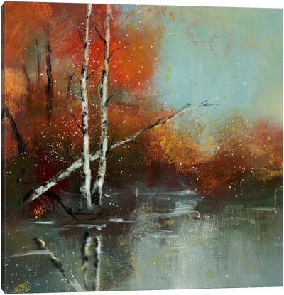 Hinterland VIII Canvas Art Print