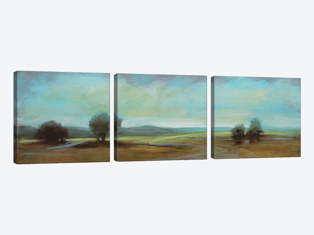 Landscape CI by DAG, Inc. 3-piece Canvas Art Print