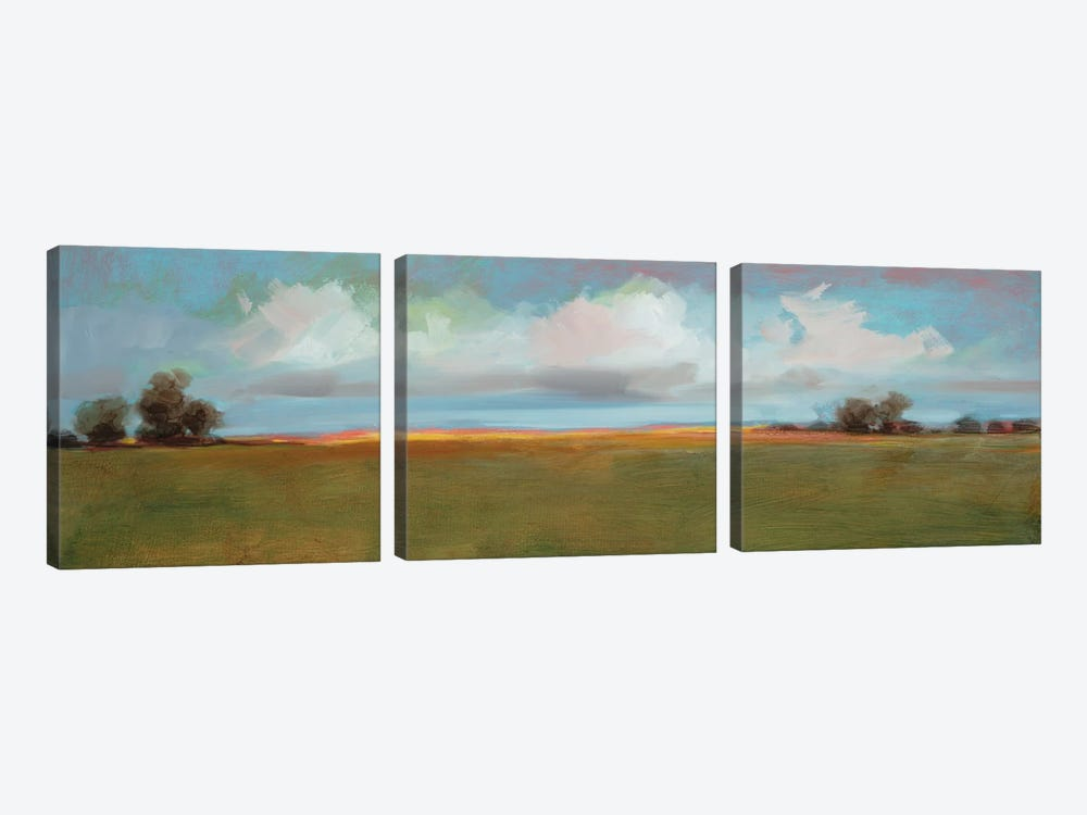 Landscape CII by DAG, Inc. 3-piece Canvas Artwork