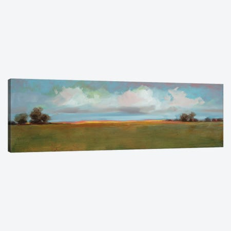 Landscape CII Canvas Print #DAG28} by DAG, Inc. Canvas Art Print