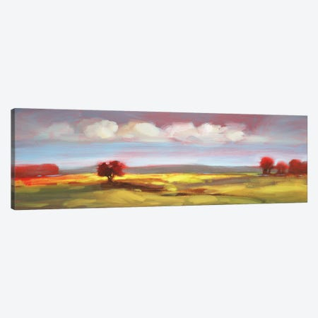 Landscape CV Canvas Print #DAG29} by DAG, Inc. Canvas Print