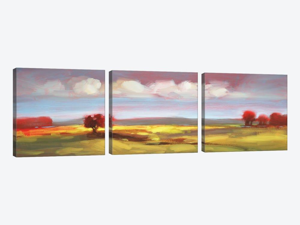 Landscape CV by DAG, Inc. 3-piece Art Print