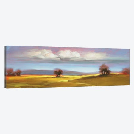 Landscape CVI Canvas Print #DAG30} by DAG, Inc. Canvas Wall Art