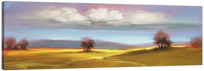 Landscape CVI Canvas Art Print