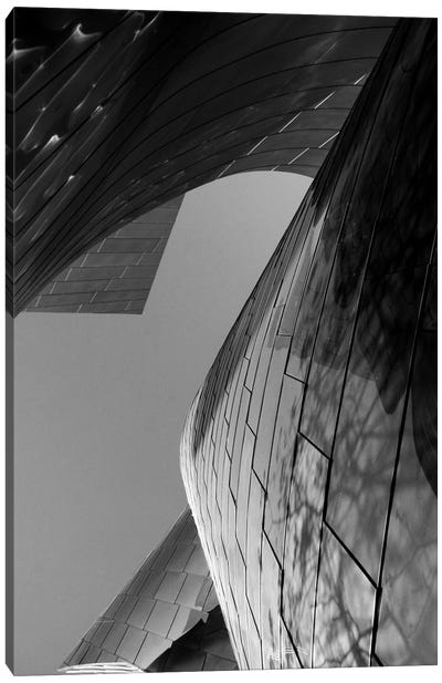 Ode To Gehry VII Canvas Art Print
