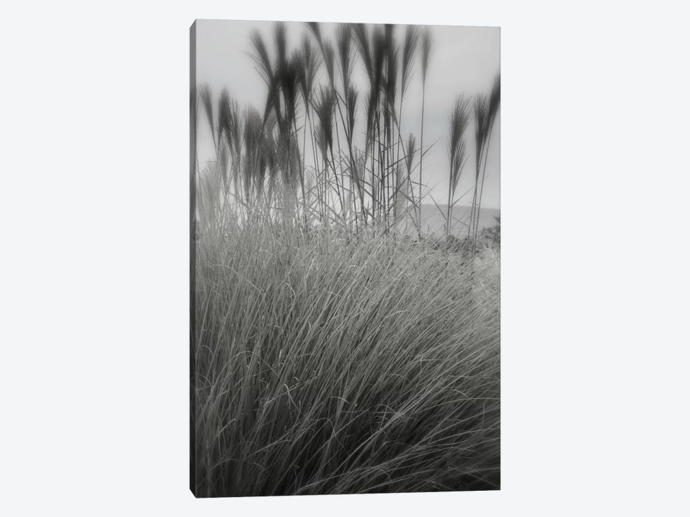 Landscape Photography CLXXX by DAG, Inc. 1-piece Canvas Print