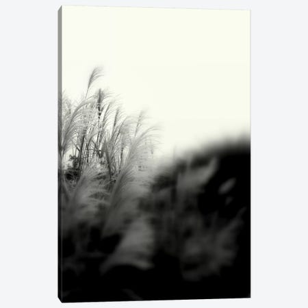Landscape Photography CLXXXI Canvas Print #DAG42} by DAG, Inc. Art Print