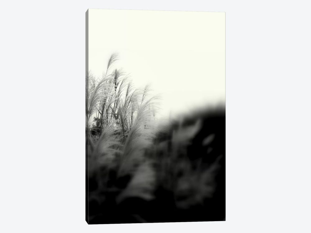 Landscape Photography CLXXXI by DAG, Inc. 1-piece Canvas Wall Art