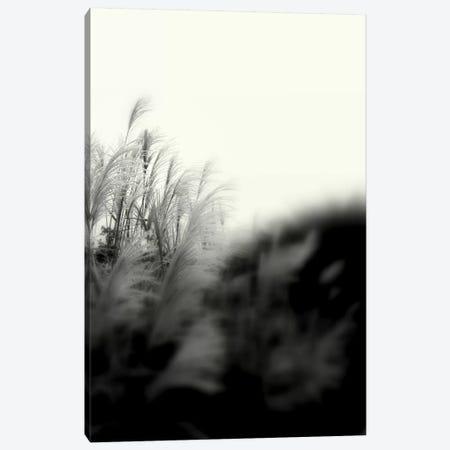 Landscape Photography CLXXXI 3-Piece Canvas #DAG42} by DAG, Inc. Art Print