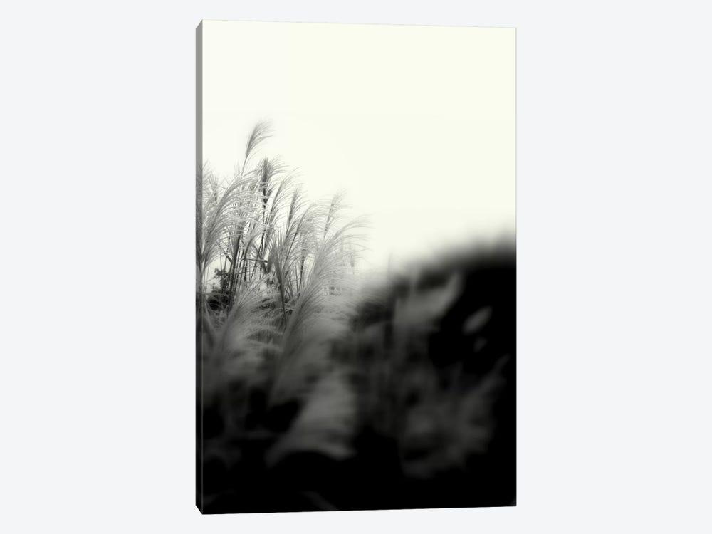 Landscape Photography CLXXXI by DAG, Inc. 1-piece Canvas Wall Art