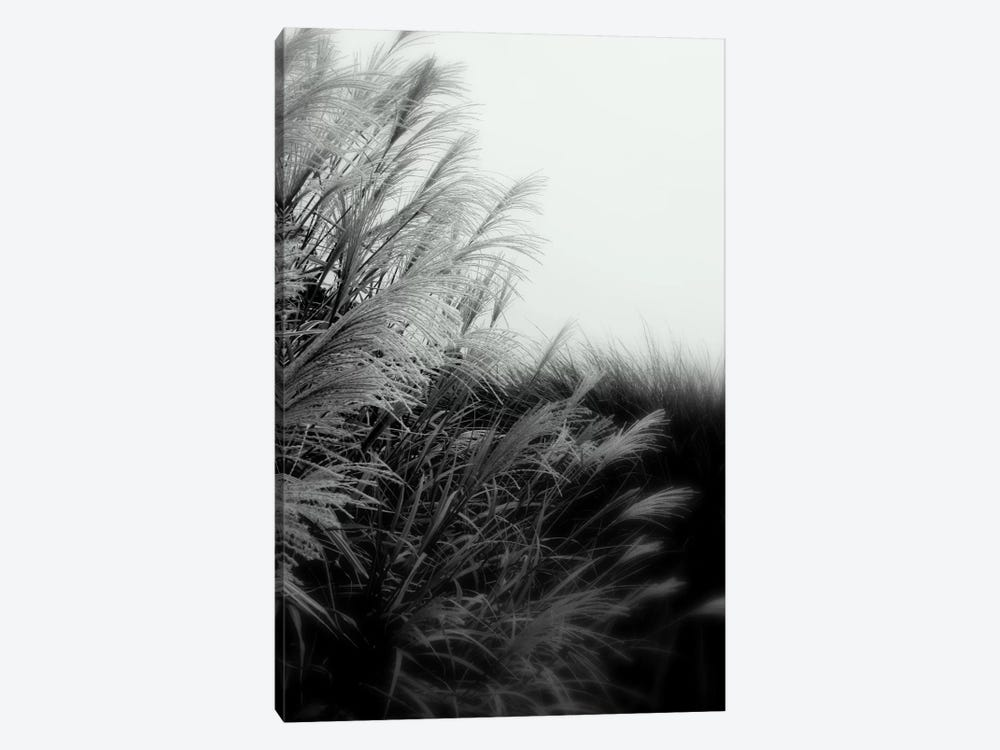Landscape Photography CLXXXII by DAG, Inc. 1-piece Art Print
