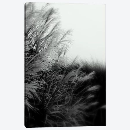 Landscape Photography CLXXXII Canvas Print #DAG43} by DAG, Inc. Canvas Print