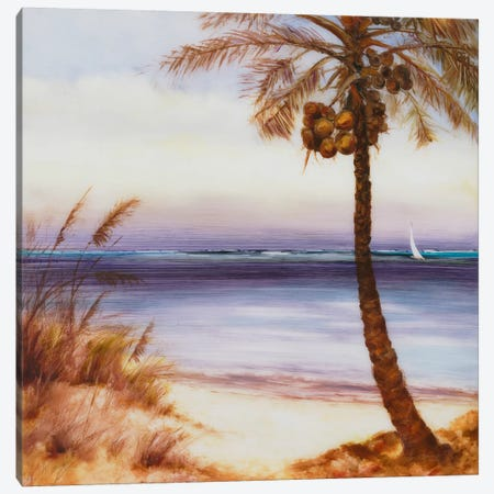 Set Sail XIV Canvas Print #DAG52} by DAG, Inc. Canvas Art