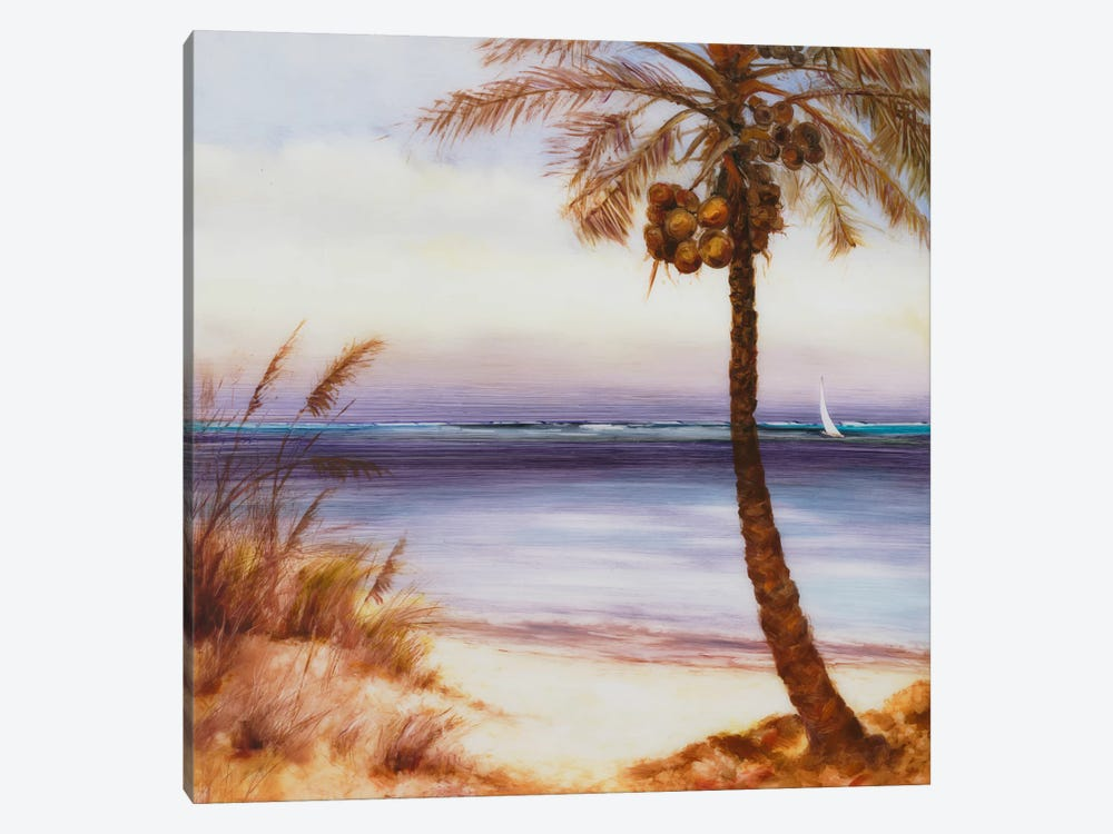 Set Sail XIV by DAG, Inc. 1-piece Canvas Print