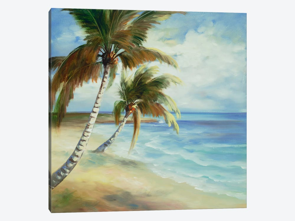 Tropical V by DAG, Inc. 1-piece Canvas Art