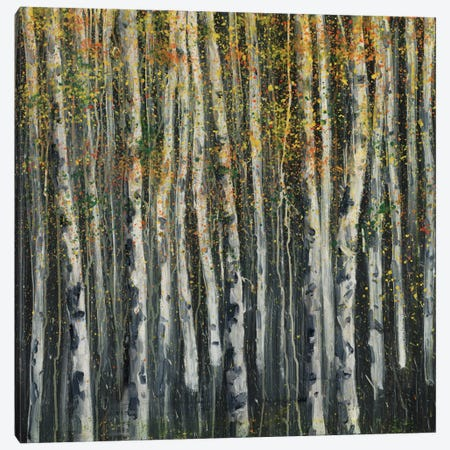 Woodland IV Canvas Print #DAG85} by DAG, Inc. Canvas Artwork