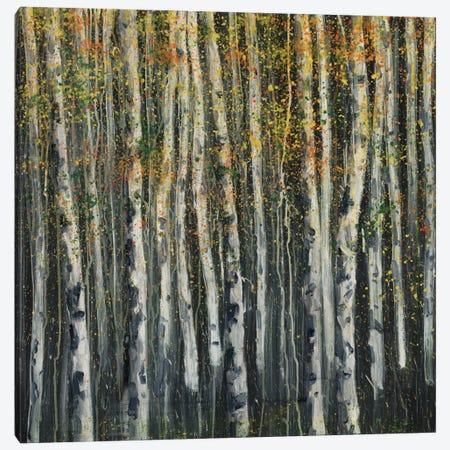 Woodland IV Canvas Print #DAG85} by DAG, Inc. Canvas Artwork