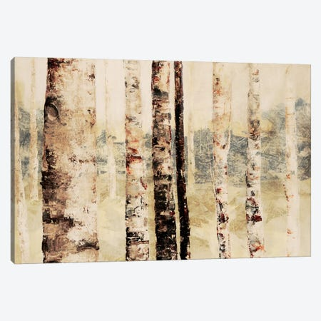 Woodland VI Canvas Print #DAG86} by DAG, Inc. Canvas Art
