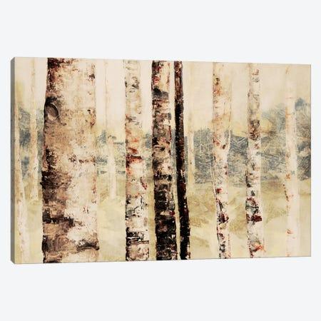 Woodland VI Canvas Print #DAG86} by DAG, Inc. Canvas Art