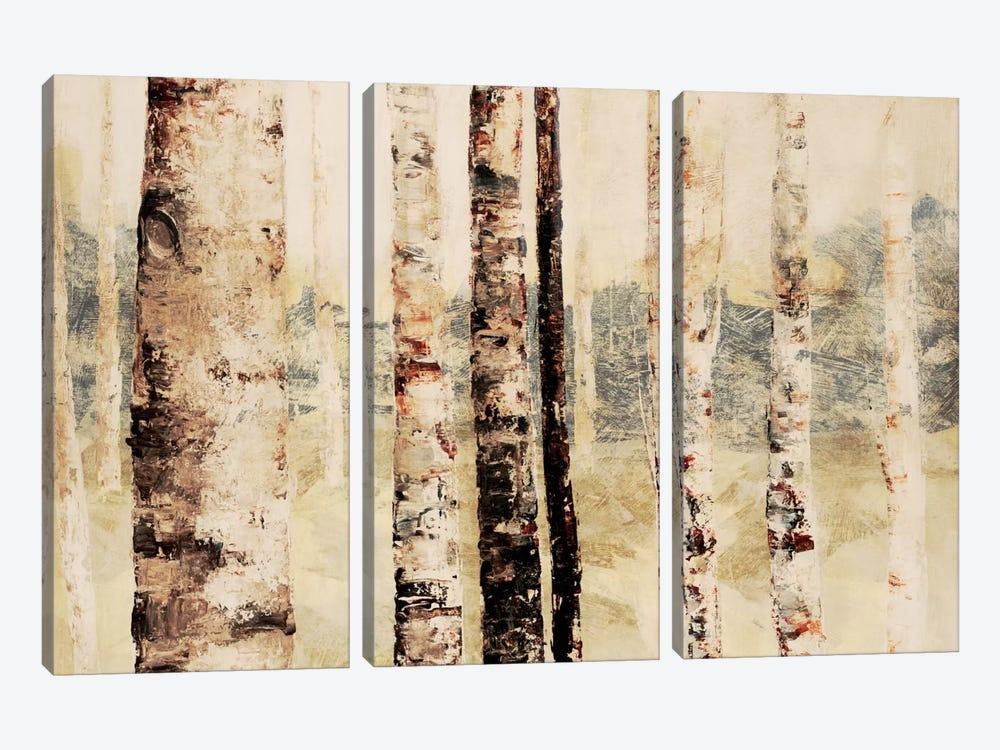 Woodland VI by DAG, Inc. 3-piece Canvas Wall Art