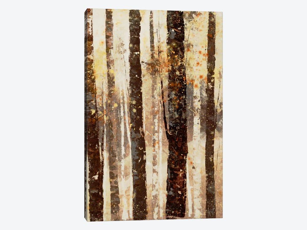 Woodland VII by DAG, Inc. 1-piece Canvas Print
