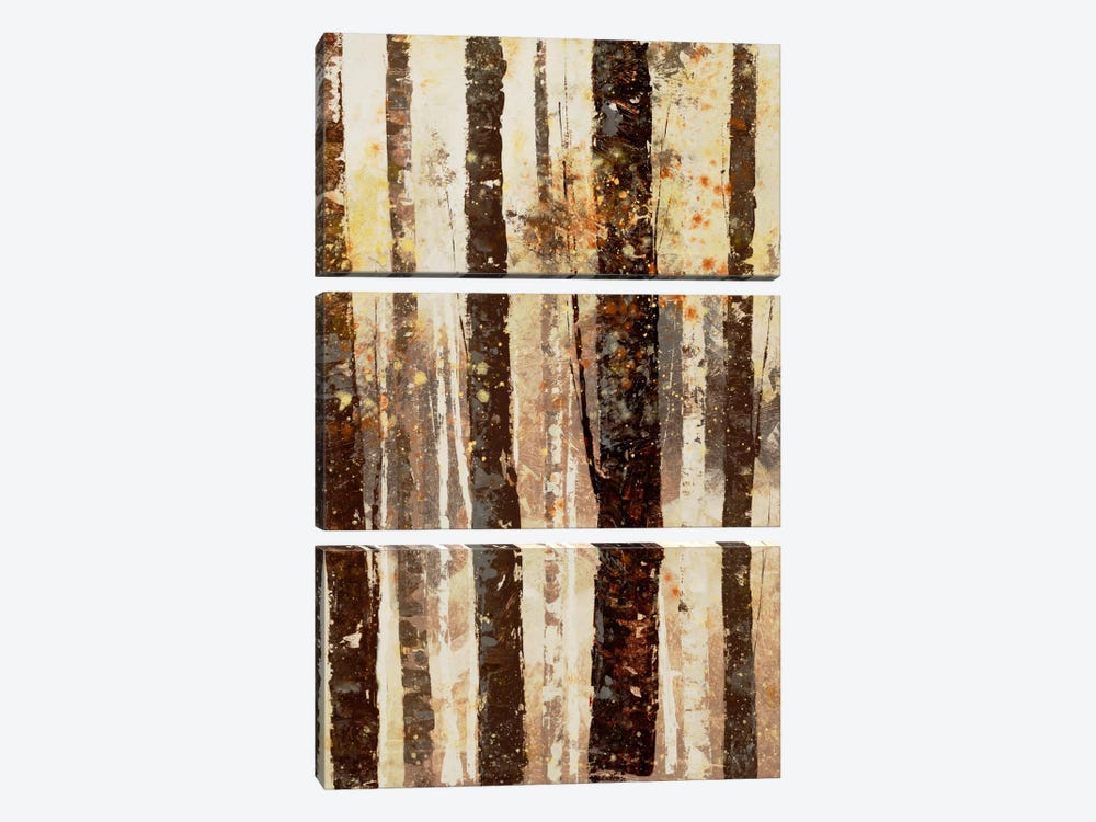 Woodland VII by DAG, Inc. 3-piece Canvas Art Print