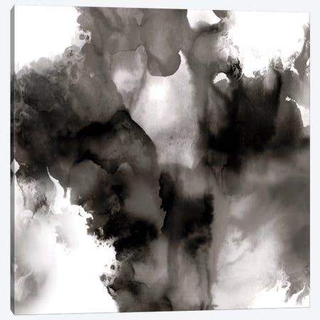 Derive Noir II Canvas Print #DAH13} by Daniela Hudson Canvas Art Print