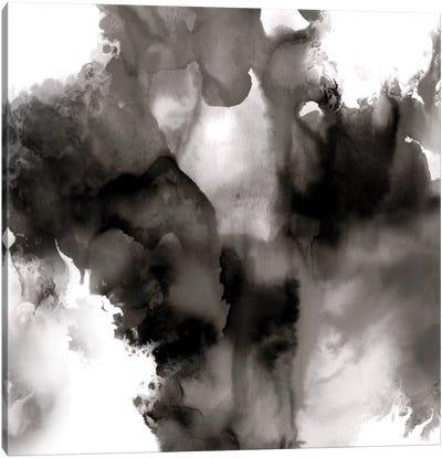 Derive Noir II Canvas Art Print