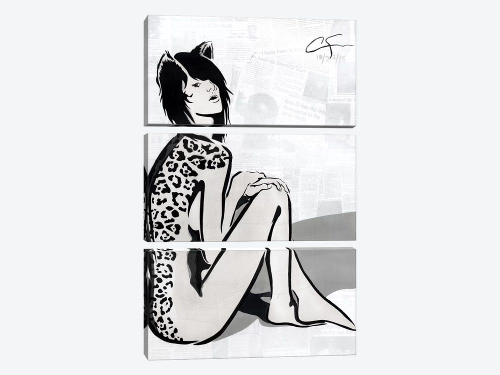 La Gata by Dakota Dean 3-piece Canvas Art Print