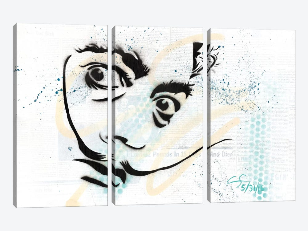 Dali by Dakota Dean 3-piece Canvas Art