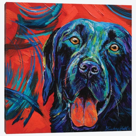 Black Lab Canvas Print #DAL147} by Lindsey Dahl Canvas Print