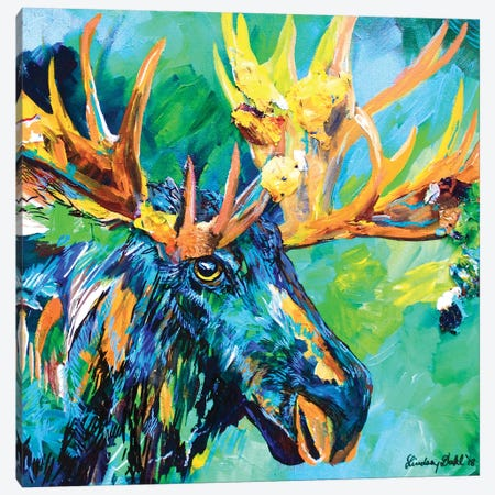 Bob Canvas Print #DAL148} by Lindsey Dahl Canvas Wall Art