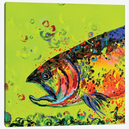 Rainbow Trout Canvas Print #DAL159} by Lindsey Dahl Art Print
