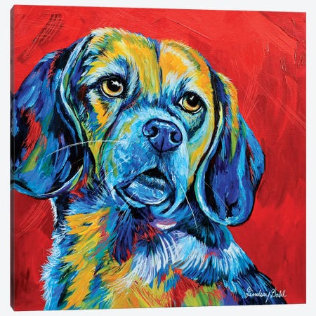 Beagle Canvas Print #DAL163} by Lindsey Dahl Canvas Art