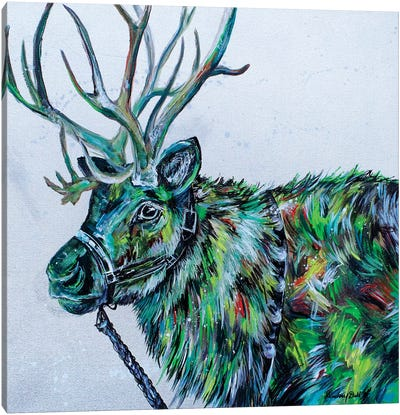 Blitzen Canvas Art Print