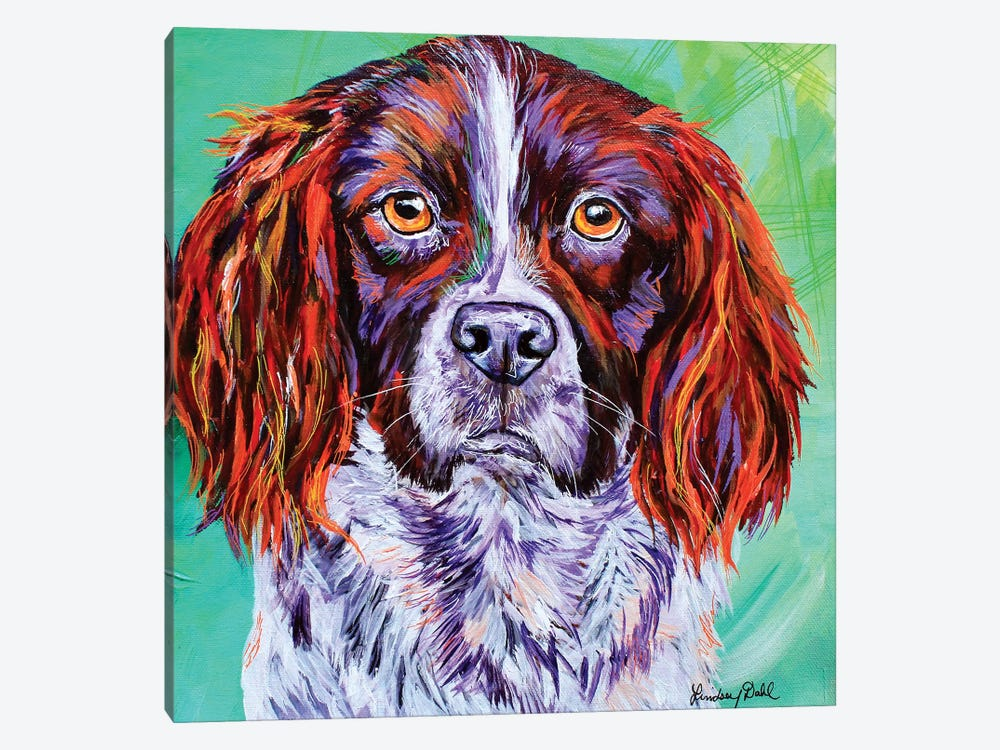 Springer Spaniel  by Lindsey Dahl 1-piece Canvas Wall Art