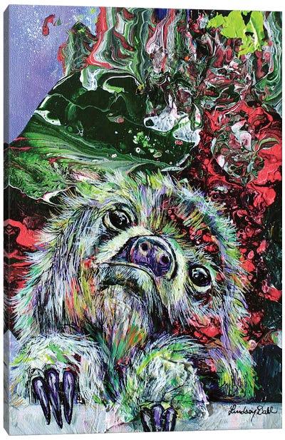 Slothly Distant Canvas Art Print