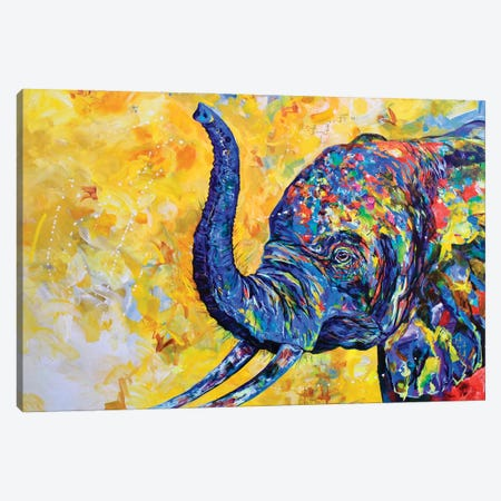 Funfetti Canvas Print #DAL193} by Lindsey Dahl Canvas Art Print