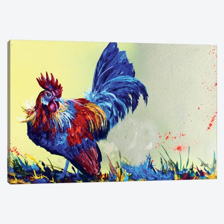 Dutch Bantam Canvas Print #DAL22} by Lindsey Dahl Canvas Artwork
