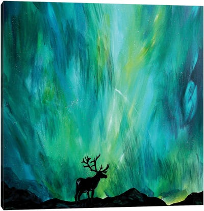 Elk Northern Lights Canvas Art Print