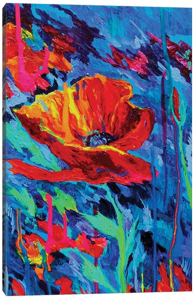 Abstract Poppies Canvas Art Print