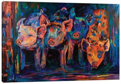 Four Little Pigs Canvas Art Print